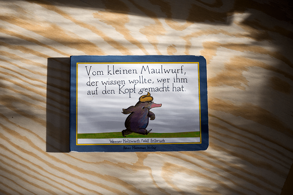 Buch zum 3. Geburtstag: Vom Maulwurf, der wissen wollte, wer ihm auf den Kopf gemacht hat