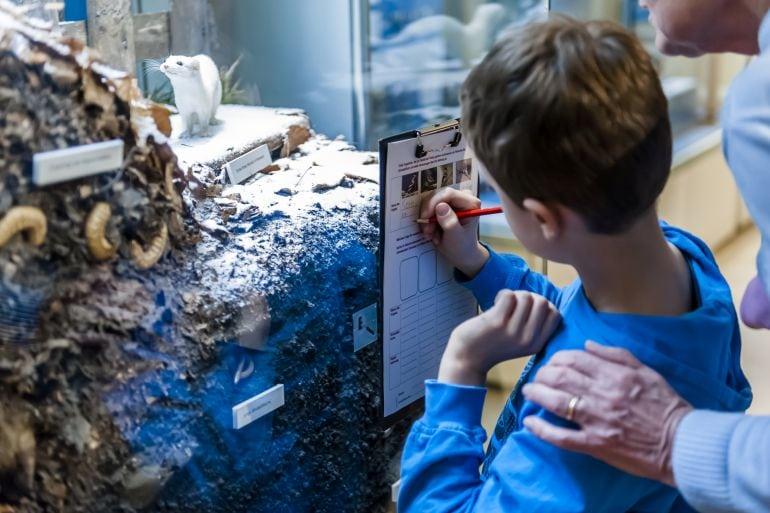 Naturkundemuseum Potsdam Winterferien