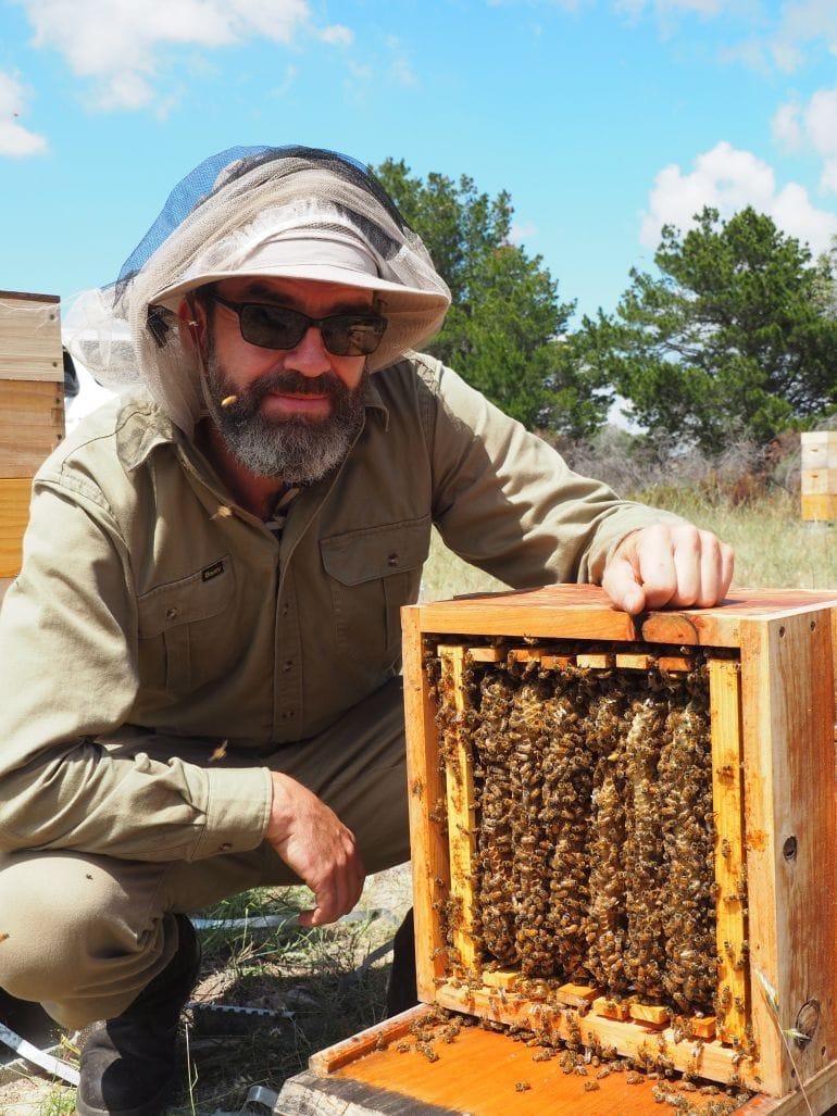 Ausstellung Biene Biosphäre Potsdam