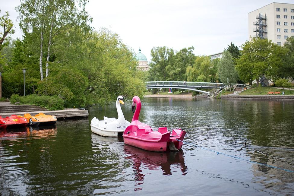 Tretboot Potsdam mieten Freundschaftsinsel Bootsverleih