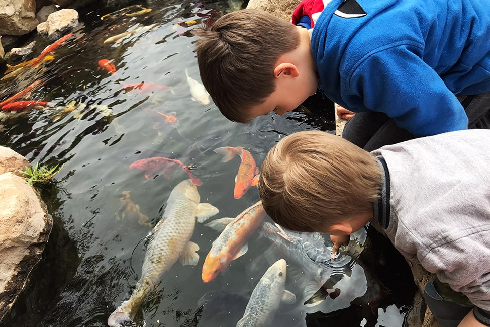 Palma Aquarium Mallorca Regen