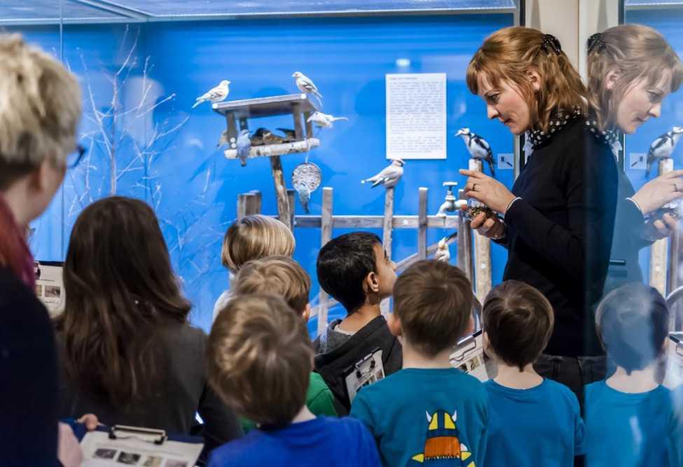 Tierisch: das Ferienprogramm im Naturkundemuseum