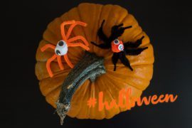 halloween diy idee spinnen basteln