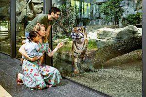 tierpark berlin zoo ausflug potsdam