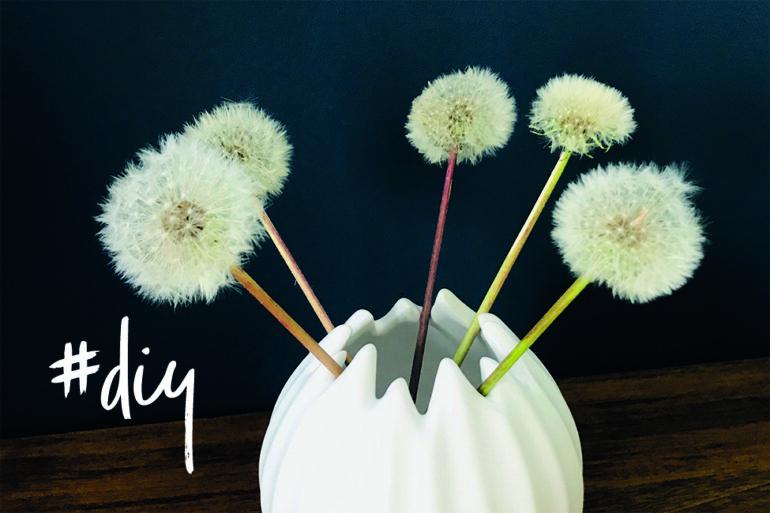 pusteblumen konservieren haltbar anleitung vase