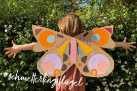 Schmetterlingsflügel DIY Kinder Pappe basteln