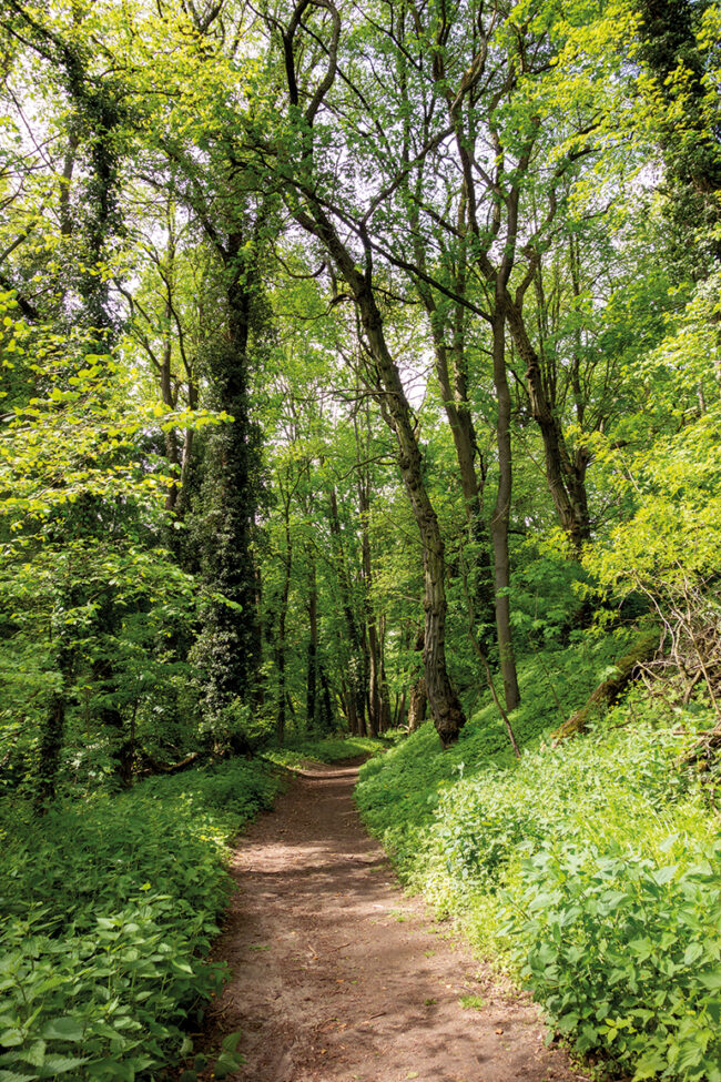 Ausflugstipp Potsdam Familie Glindow Natur