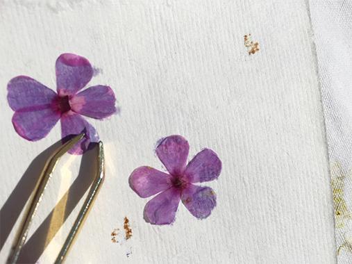 Blumendruck Blütendruck Papier DIY